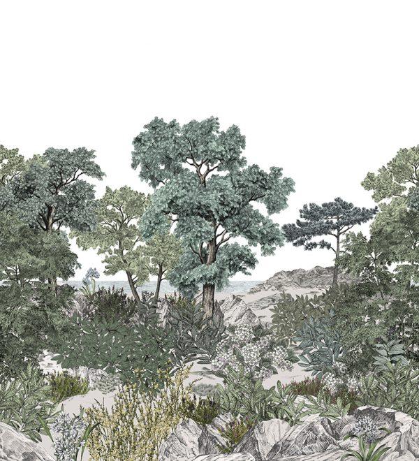 ISIDORELEROY_FORET_DE_BRETAGNE_Naturel
